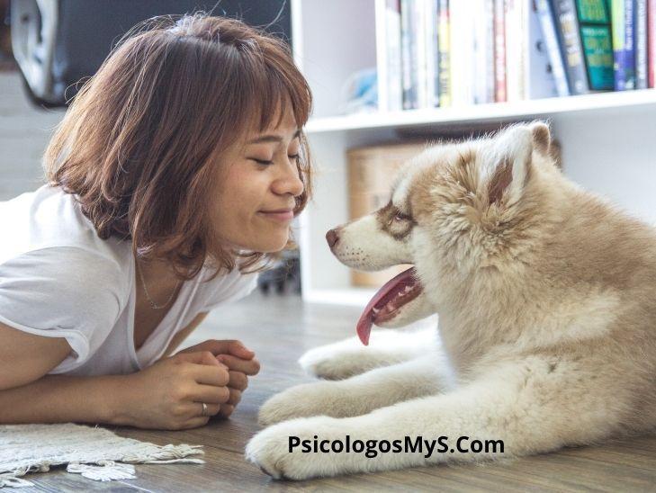 Mejoran las mascotas la salud mental durante el aislamiento social